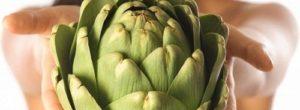 Pastillas de alcachofa